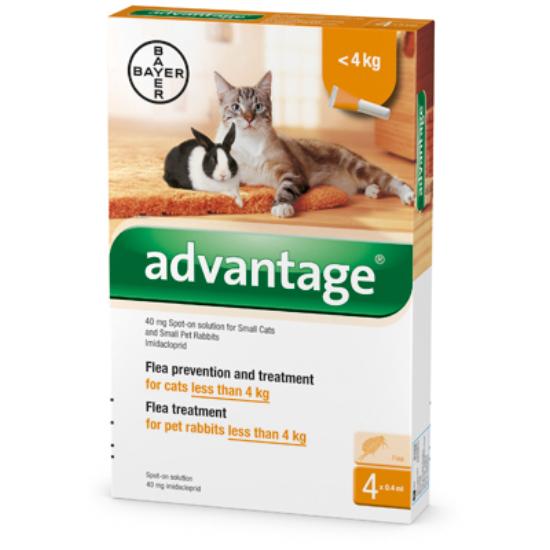 Advantage Spot On macskáknak 4kg alatt
