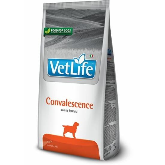 VetLife Dog Convalescence száraztáp lábadozás idejére 2kg