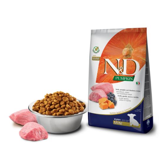 N&D Dog Pumpkin- Bárány-Sütőtök-Áfonya száraztáp Kistestű Kölyök Kutyáknak