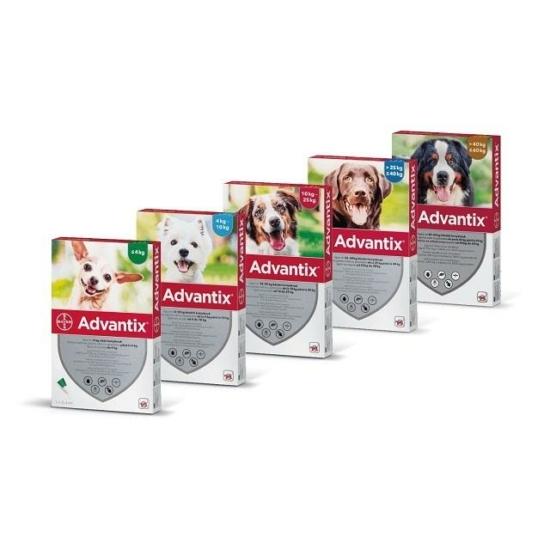 Advantix spot on rácsepegtető oldat kutyáknak