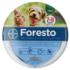 Foresto nyakörv 38cm kutya-macska 8kg alatt